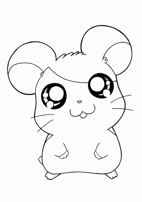 Coloring Page Hamster by Hamsters Coloring Pages Coloring Home