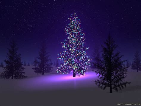 beautiful christmas tree tony s book world