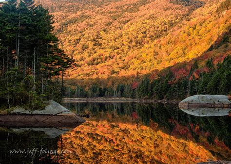 planning your new fall foliage trip the thrifty