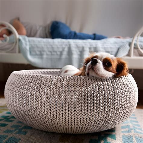 knit store curver knit pet bed the container store