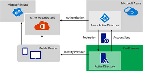 id馥 am駭agement bureau identify saas connectivity requirements microsoft docs