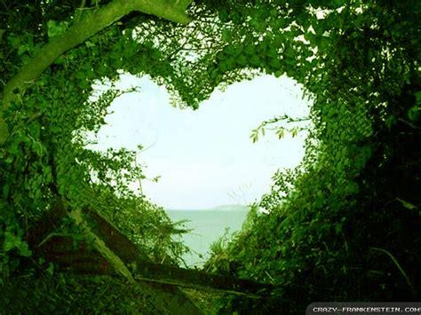 wallpaper green love hd widescreen backgrounds wallpapers love wallpaper