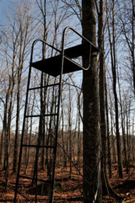 how to set up tree stand setting up the tree stand howstuffworks