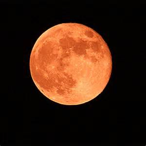 What Is A Strawberry Moon by Astrology What Today S Strawberry Moon Means For You