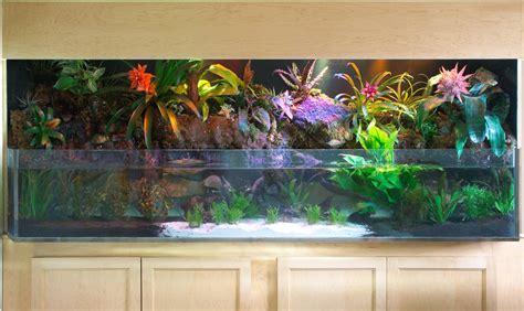 aquarium design new york freshwater fish tank maintenance york 2017 fish tank