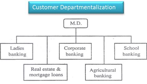 departmentalization  organization  customer group