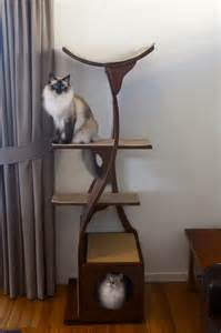 Lotus Cat Tree Lotus Cat Tower And Ragdoll Cats In Australia