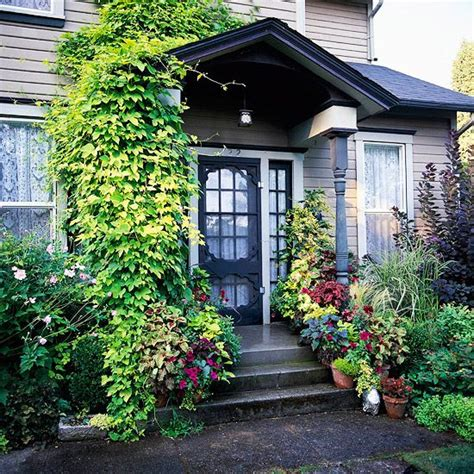 curb appeal plants container garden curb appeal and gardens on