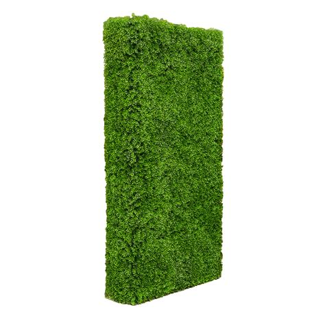 plant room divider 100 plant room divider room dividers for bedrooms