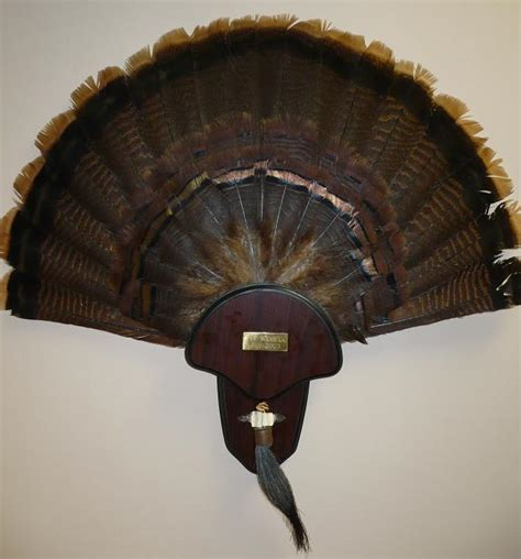 turkey fan mount kit turkey fan mount huntingnet com forums