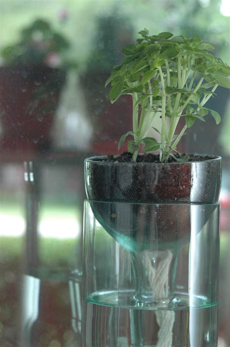 diy self watering herb garden self watering planter made from recycled wine bottle perfect