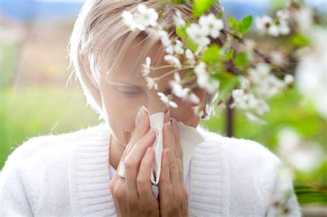 10 easy home remedies to prevent allergies ayurveda and