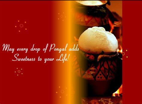pongal festivals of india