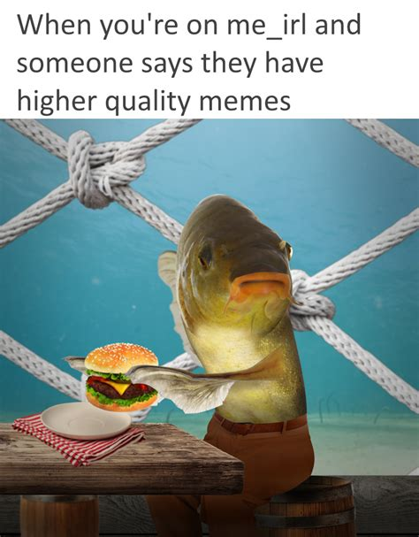 Quality Memes - high quality memes me irl know your meme