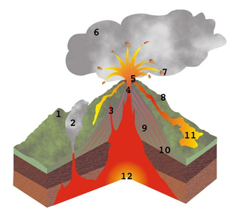 cross section of a volcano volcano cross section
