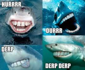 black friday cycle gear 24 funny shark week pictures smosh