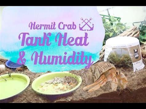 hermit crab heat l hermit crab tank heat humidity youtube