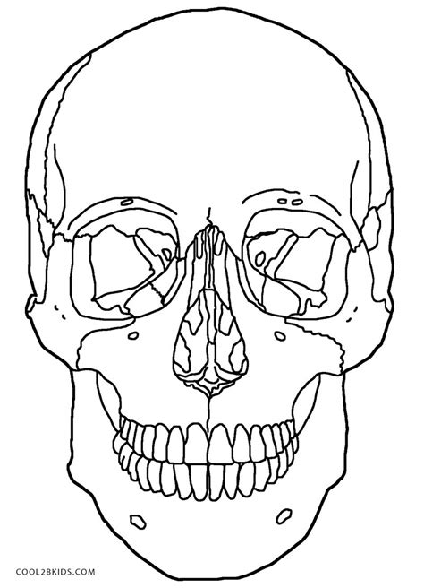 anatomy coloring book blackwells anatomy and physiology free coloring pages coloring home