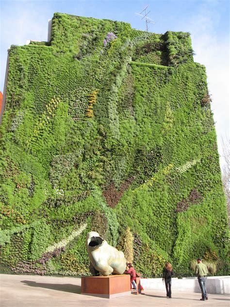 giardino verticale madrid traspirazione delle piante