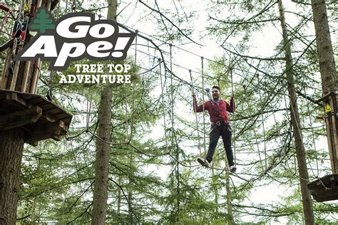 Tree Top Adventure For One With Go Ape Lastminute M