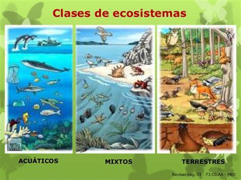 imagenes de ecosistemas naturales ecosistemas 5 186 2014 parte 1