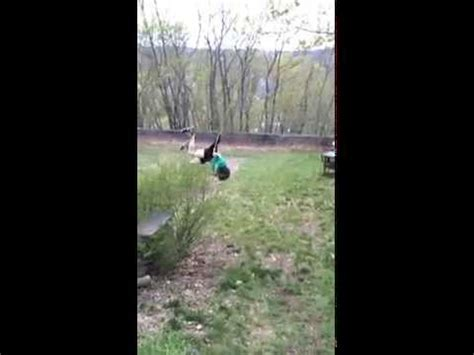 swing wedgie video student gets giant wedgie as he jumps on rope swing