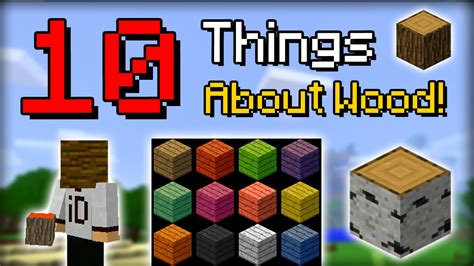 10 secret things you didn minecraft 10 things you didn t know about wood funnydog tv
