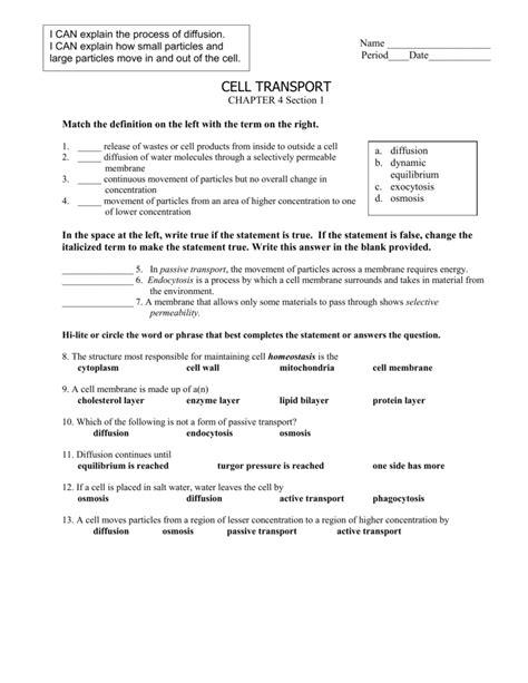 transport requiring energy worksheet answers