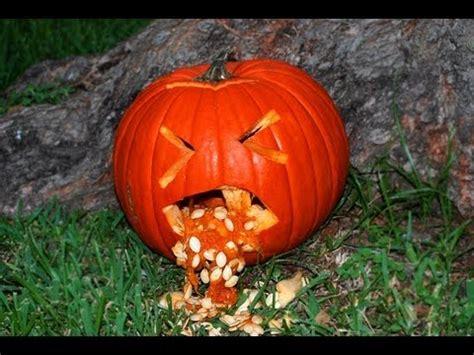throwing up pumpkin idea 3 throwing up pumpkin