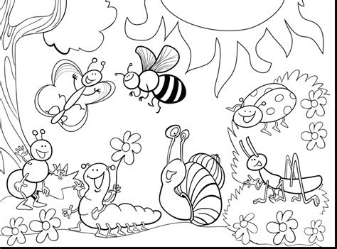 preschool coloring pages bugs bug coloring pages jacb me