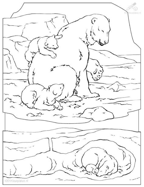 Polar Bear Coloring Page Polar Animal Coloring Pages