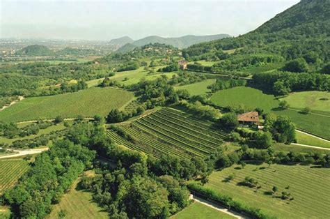 colli euganei fattoria eolia vini dei colli euganei doc made rural