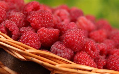imagenes hd frutas m 225 s wallpapers de paisajes frutas comidas en hd taringa