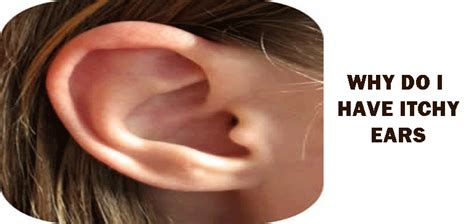 itching ears itchy ears solutions