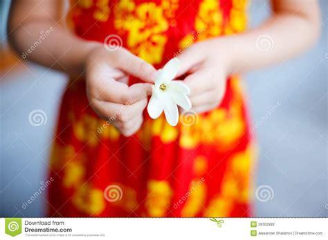 fiore di tiare fiore di tiare fotografia stock immagine 26302992