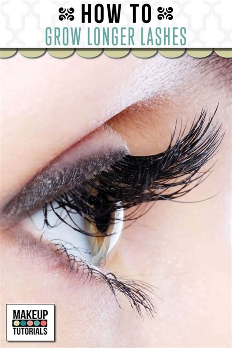Do Couture Lashes Interest You by 25 Best Ideas About Do Eyelashes Grow Back On