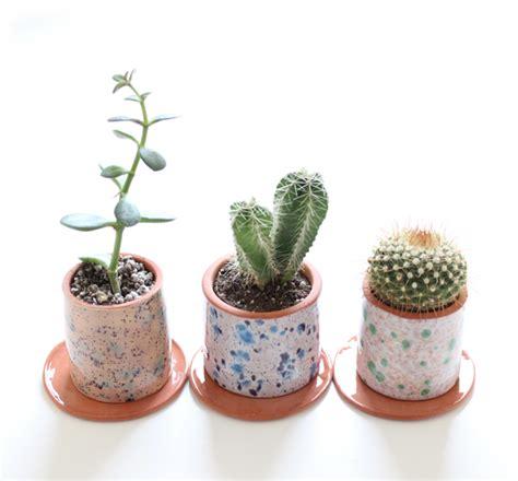 Cactus Planters Pots by Cacti Archives Babasouk