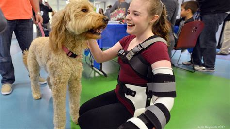 petsmart therapy boston children s hospital gets an assist to bring more therapy dogs with petsmart