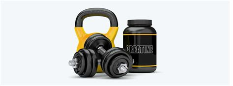supplement guide creatine the ultimate supplement guide