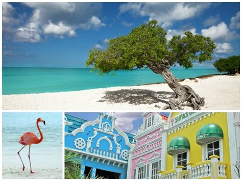 aruba catamaran charter five idyllic fall yacht charter destinations that are the