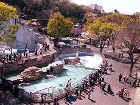 Higashiyama Zoo And Botanical Gardens Higashiyama Zoo And Botanical Gardens Nagoya Cityseeker