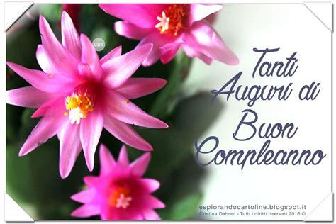 foto di fiori per compleanno tanti auguri di buon compleanno con fiori tondekapper