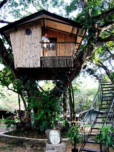 adult tree house plans inspirational how to build a tree 1000 images about tree houses real tree houses for