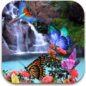 Live Butterfly Wallpaper For Windows 7 by 3d Butterfly Live Wallpaper For Pc