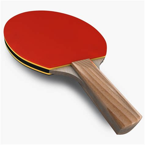 Raket Pingpong ping pong paddle 3d model stock