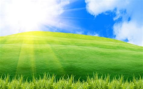 best day wallpaper 小清新绿色护眼美丽草原风光桌面壁纸 一 风景壁纸 壁纸下载 美桌网