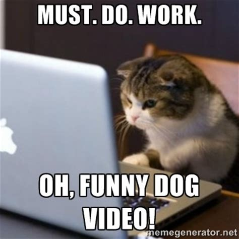 Dog On Computer Meme - 37 most funniest computer meme gifs jokes photos