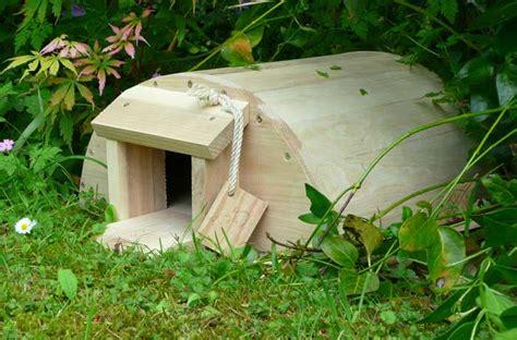 hedgehog house design welcome hedgehogs into your garden gardening with children