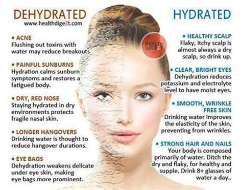 hydration the skin 187 wellness tips makeup esthetics