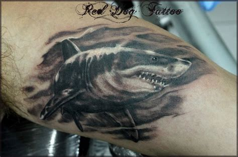shark fin tattoo 17 best images about ideas on buddhists